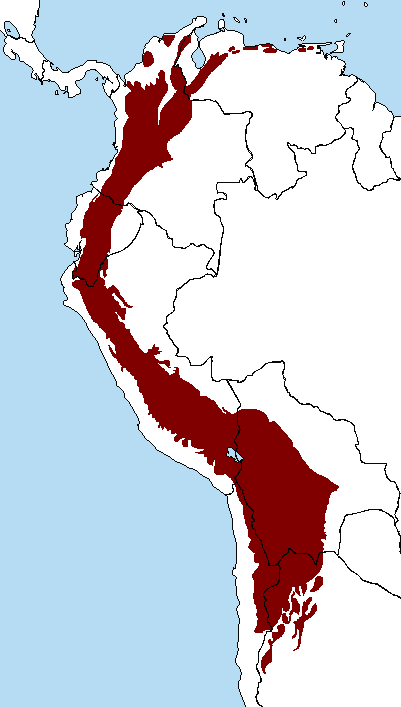 external image Tropical_Andes.PNG