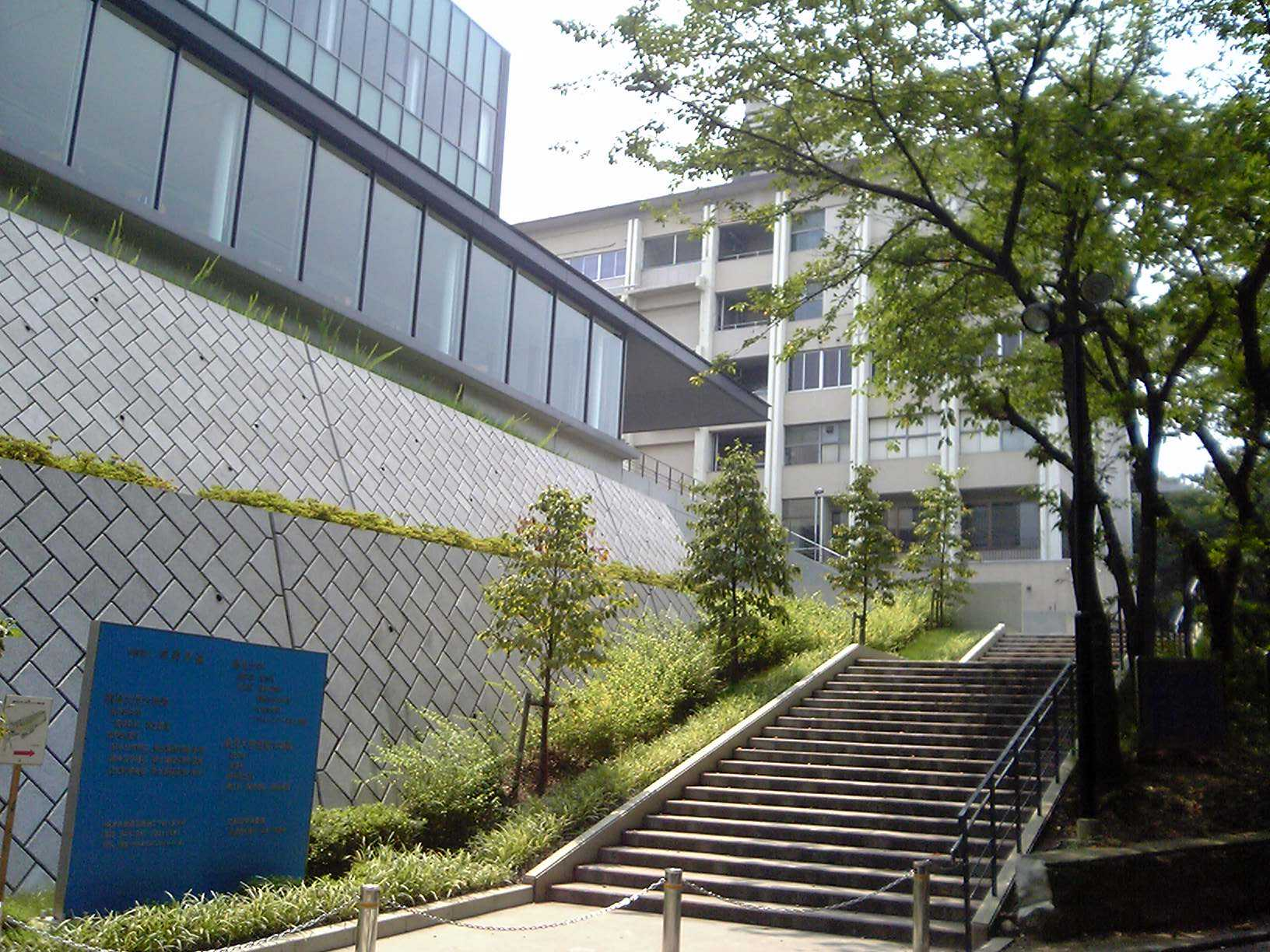 付属 高校 大学 鶴見