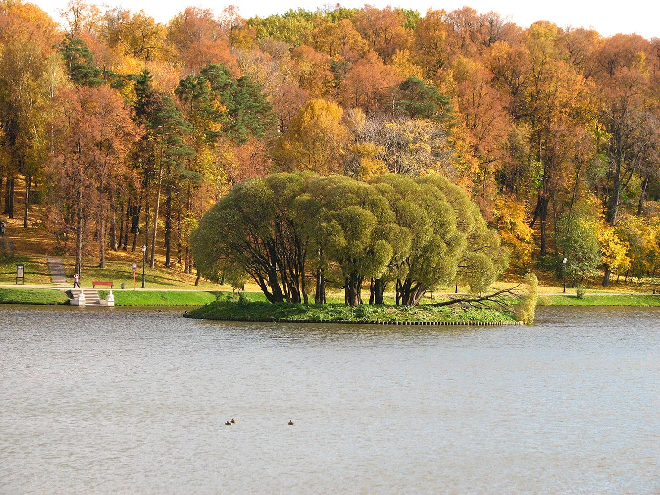 Картинки осень для календаря природы