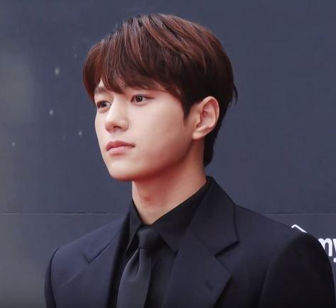 L South Korean Singer Wikipedia