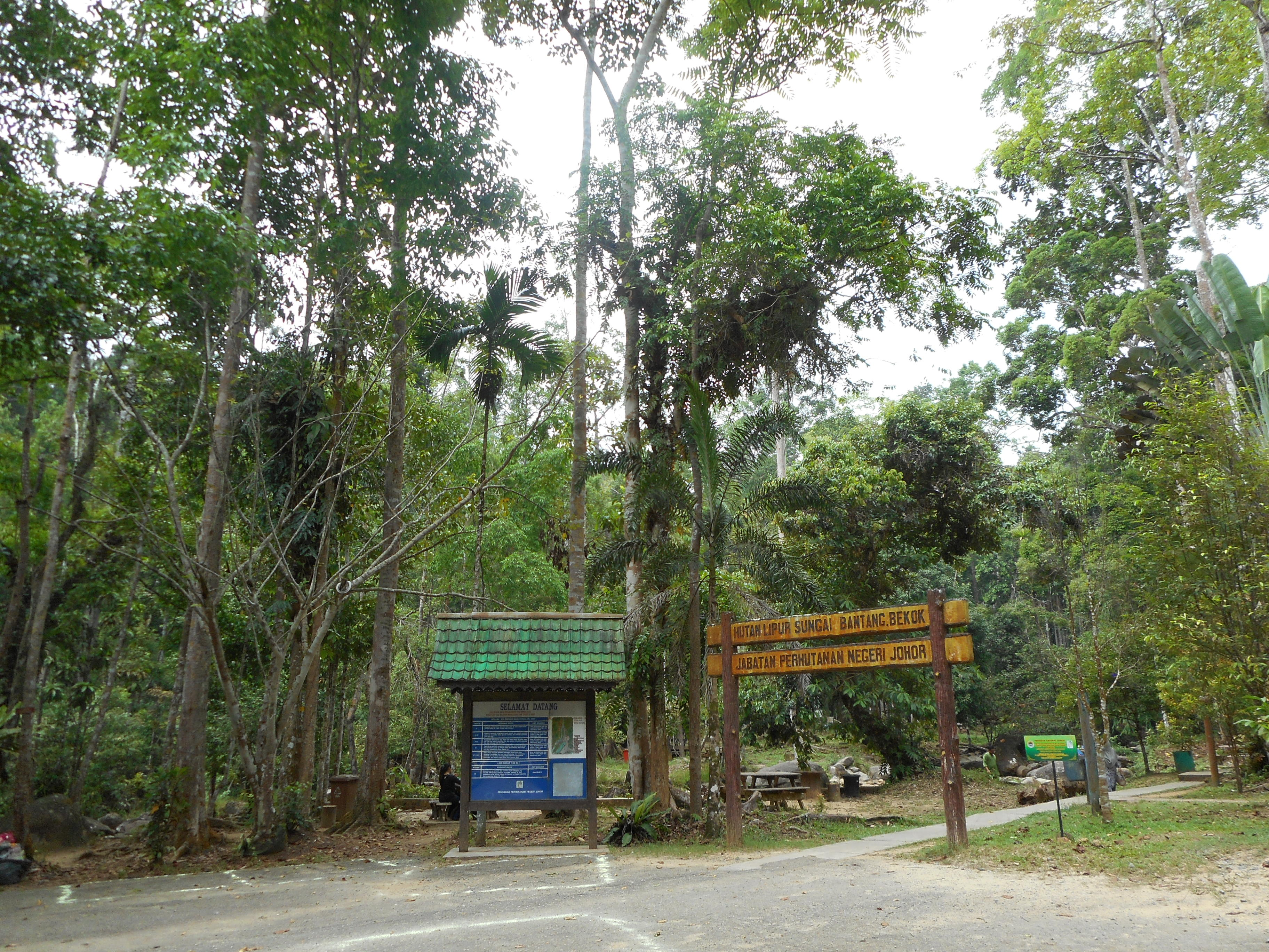 Hutan wisata   Wikipedia bahasa Indonesia, ensiklopedia bebas