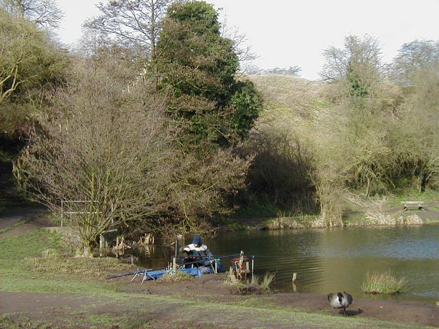 Breaches Pool and Leasowes Embankment - geograph.org.uk - 138276