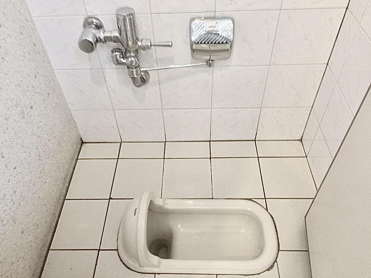 電車 の トイレ に スマホ 落とし た 男