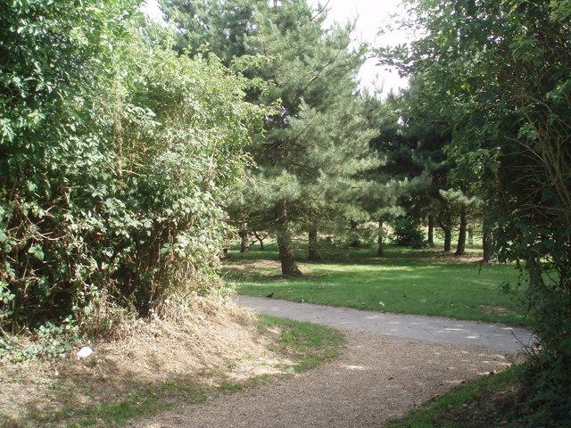 Chatsworth Park - geograph.org.uk - 1405404