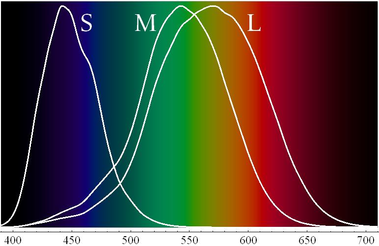 попытаться собрать график спектра картинки бергамот или