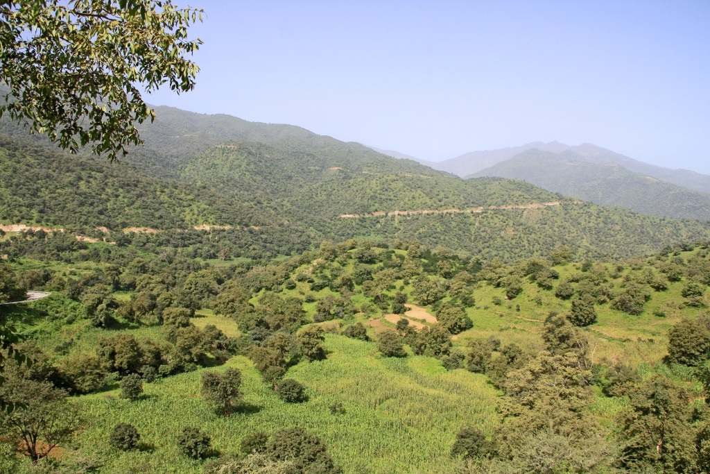 Lansekap Eritrea di dekat jalan menuju Massawa