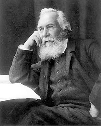 the works and achievements of ernst heinrich haeckel Ernst heinrich philipp august haeckel, or ernst haeckel, was a german biologist, philosopher, naturalist and professor known for the phrase ontogeny recapitulates phylogeny he was also an artist whose works are about nature.