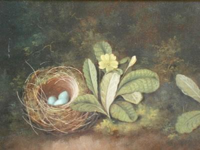 George Crisp - Bird's nest with primrose