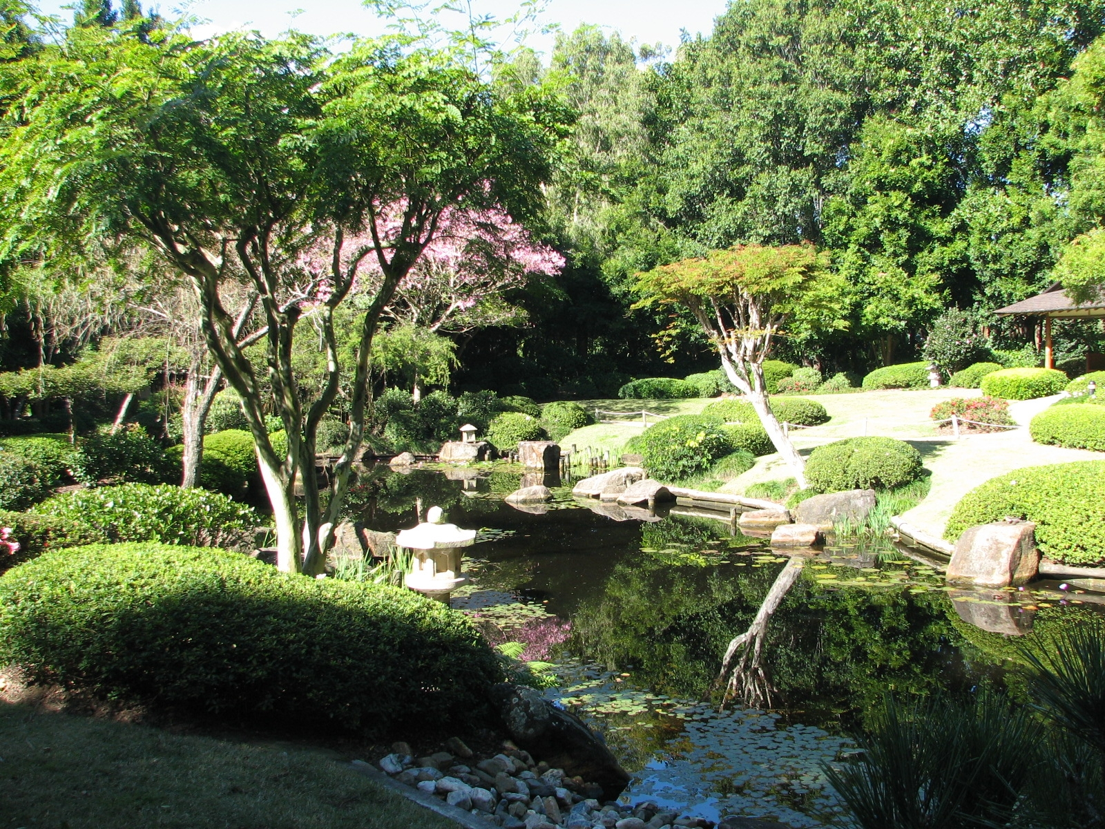 Description japanese gardens at mt coot tha