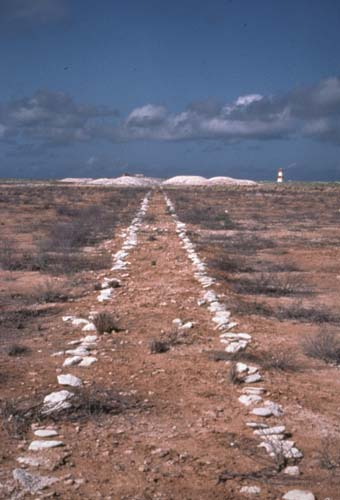 Remains of a guano tramway on Jarvis Island, looking west with 125-year-old heaps of mined but never-shipped guano in the background near the day beacon Jarvis Island Guano Tramway.jpg
