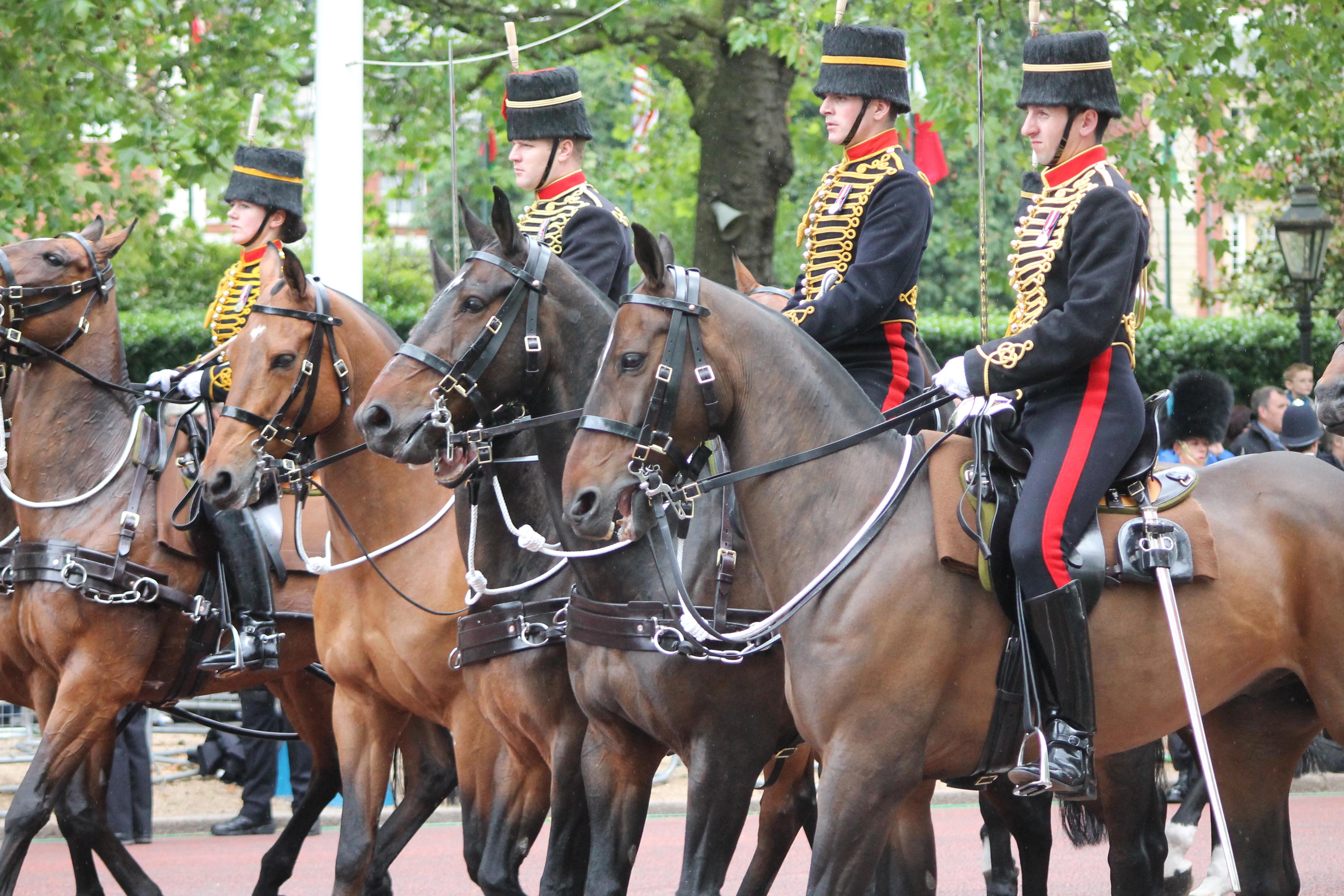 Royal Horse Artillery Military Wiki Fandom