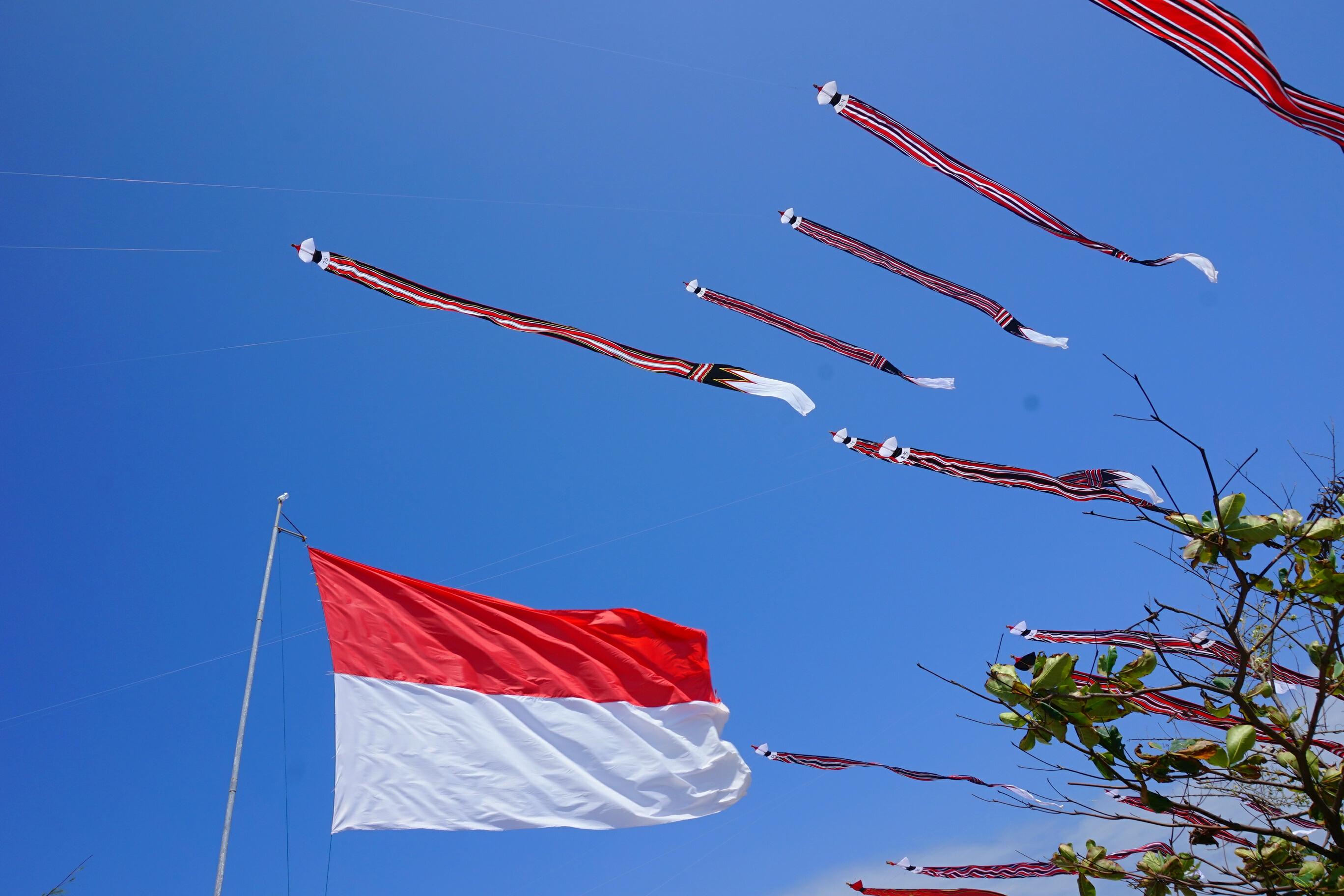 file layang layang tradisional raksasa dan bendera merah putih jpg wikimedia commons https commons wikimedia org wiki file layang layang tradisional raksasa dan bendera merah putih jpg