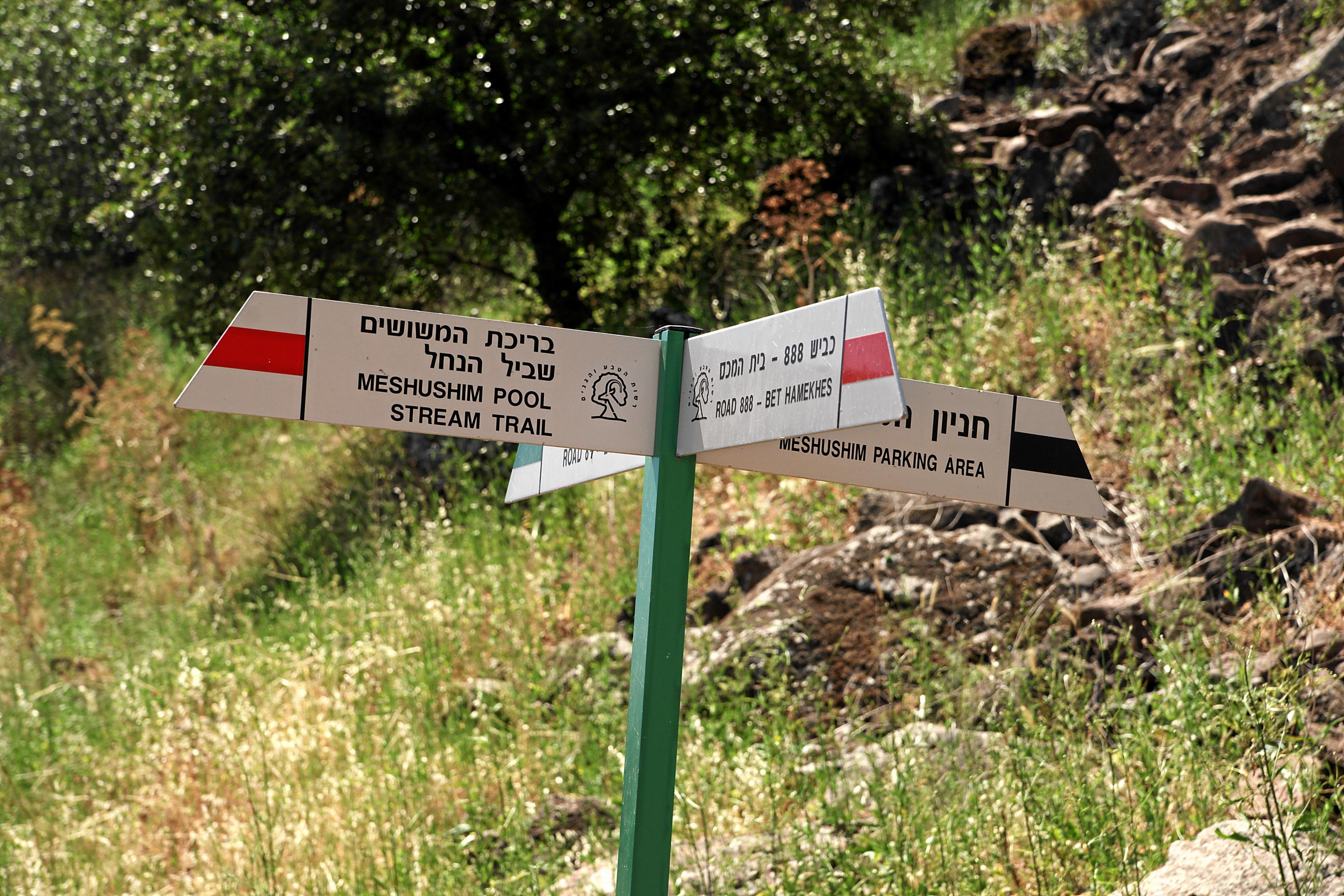 Baignade reserve Meshushim , activites dans le Golan, baignade en riviere, activités enfants, randonnée dans le nord, coupons de réduction