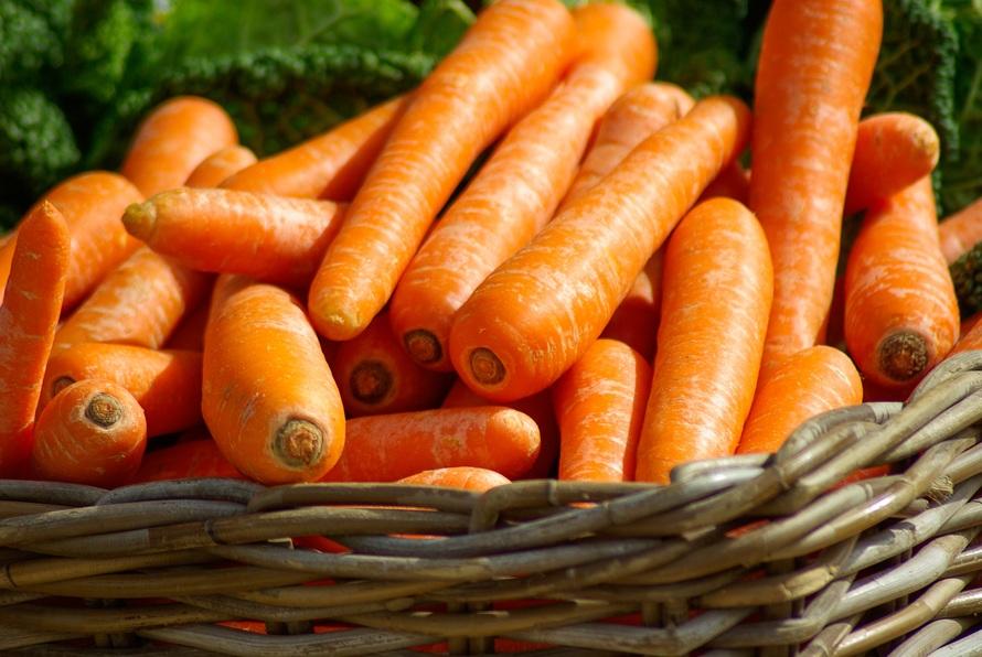 """Résultat de recherche d'images pour """"la carotte"""""""