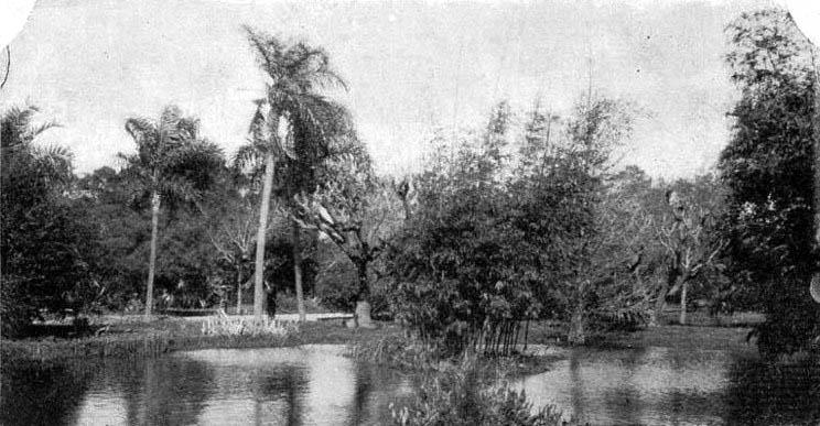 Parque España (H.G. Olds, ca. 1900).jpg
