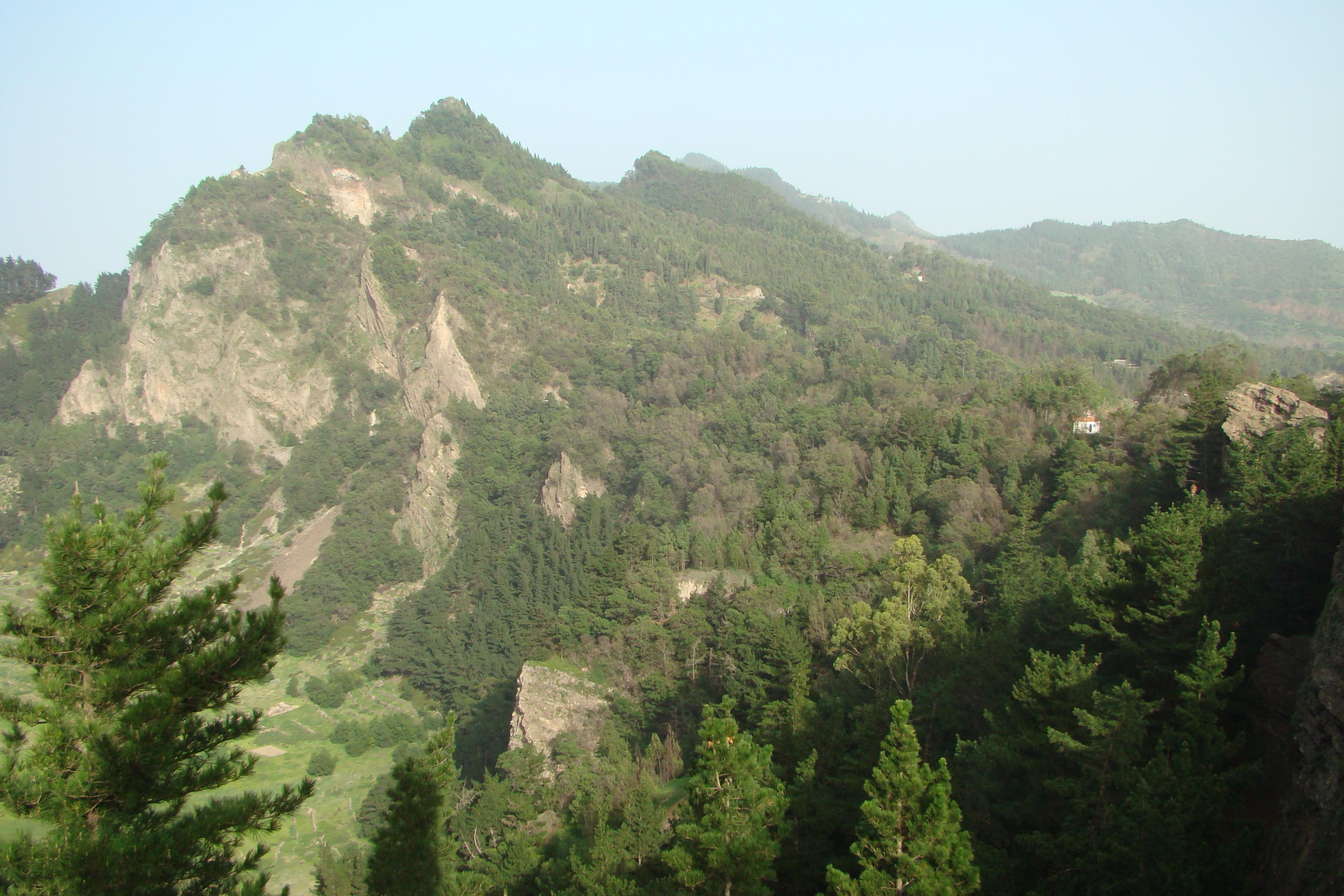 Pico Da Cruz.Pico Da Cruz Wikipedia