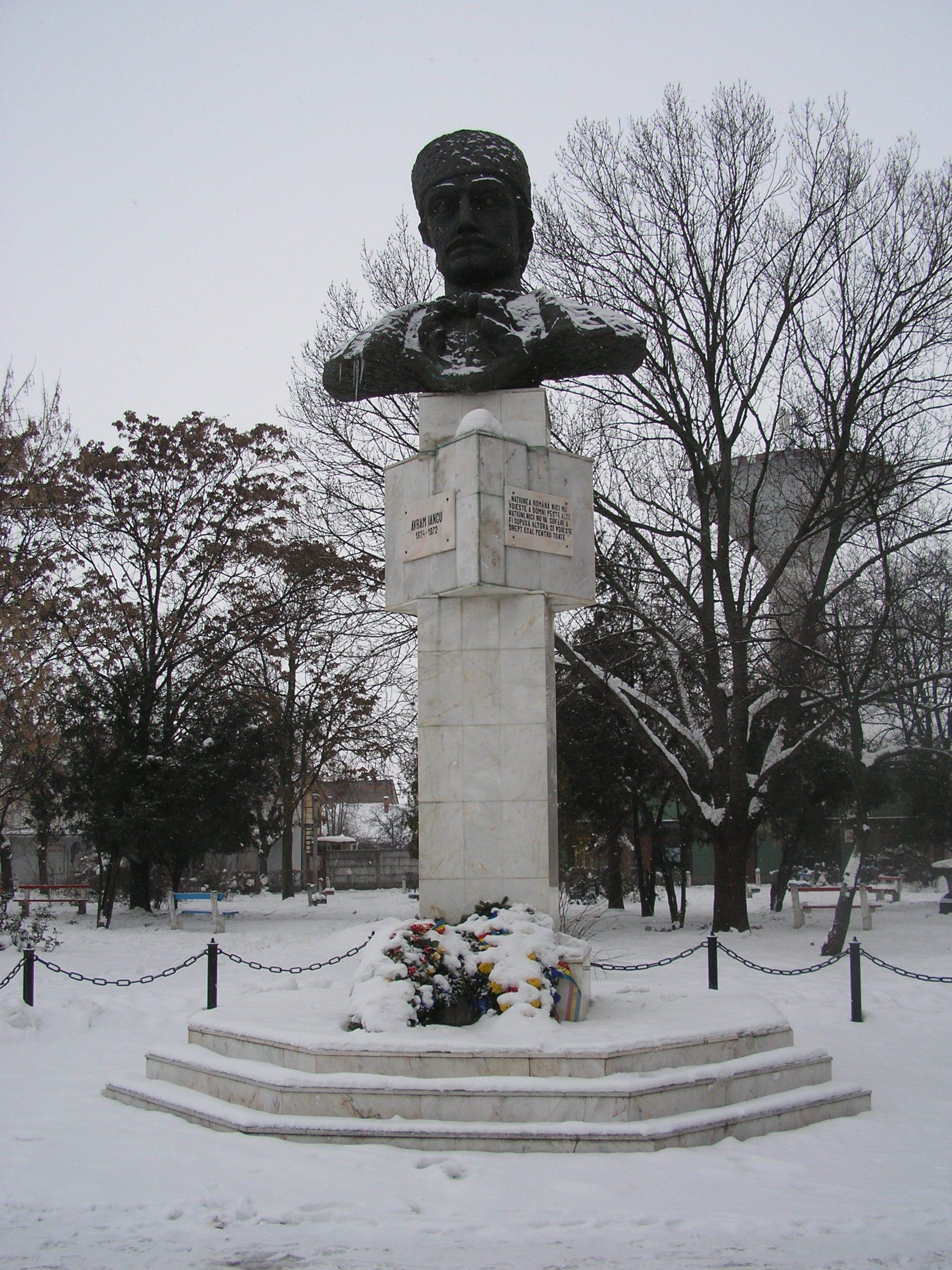 Fişier:RO BH Salonta statuie Avram Iancu.JPG