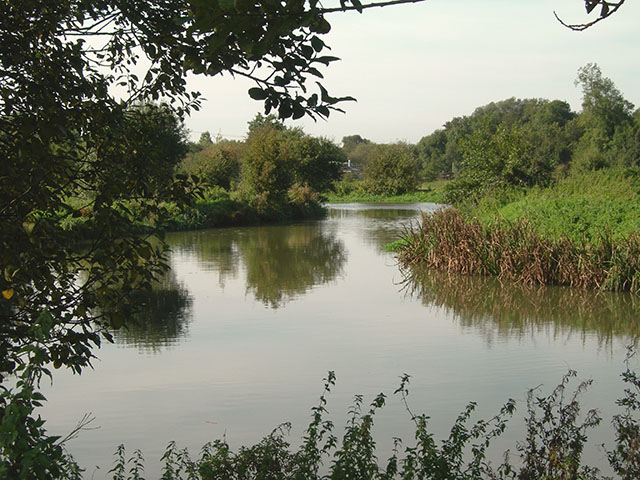 River Stort - geograph.org.uk - 258527