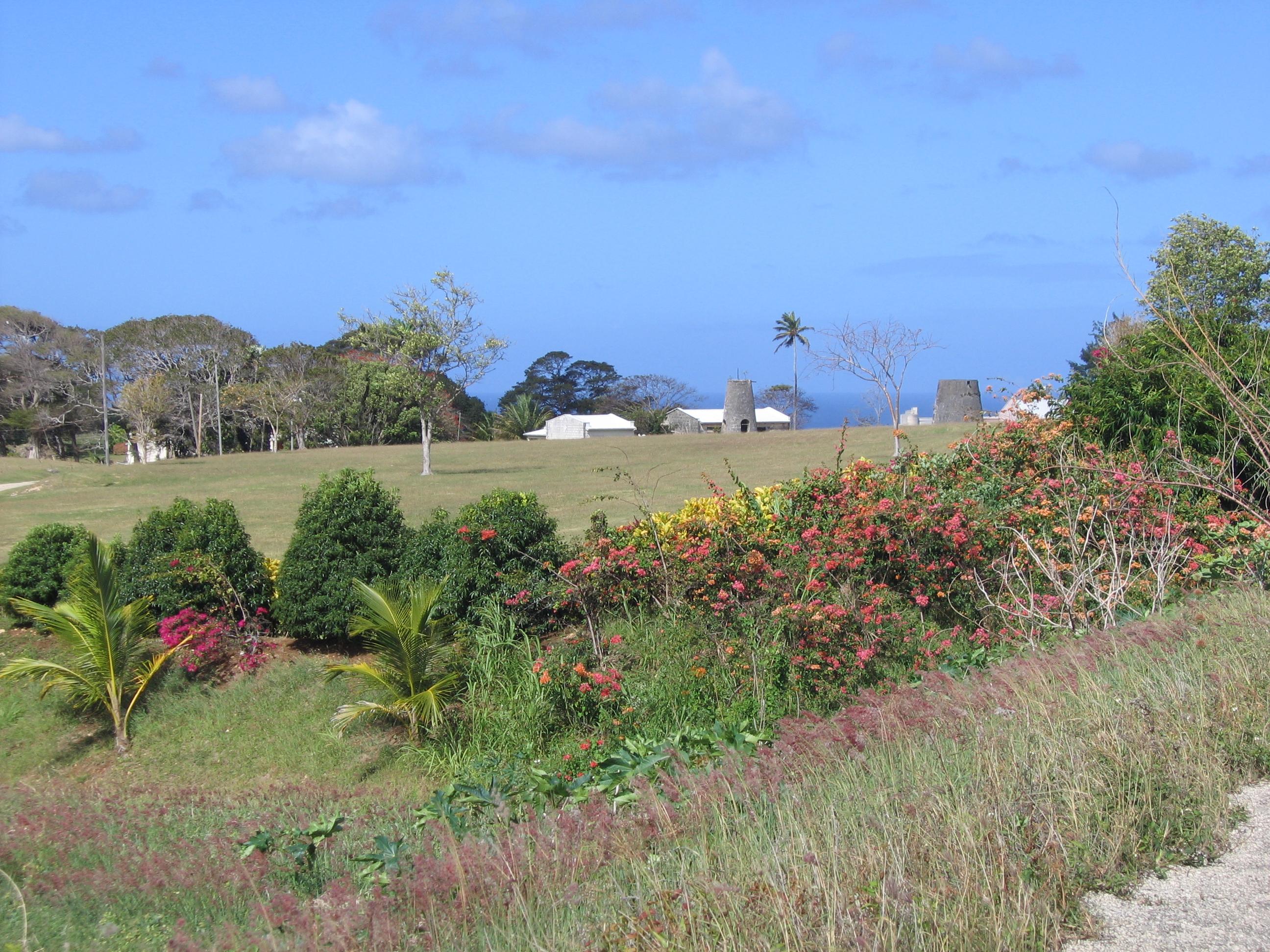 Άγιος Πέτρος, Μπαρμπάντος