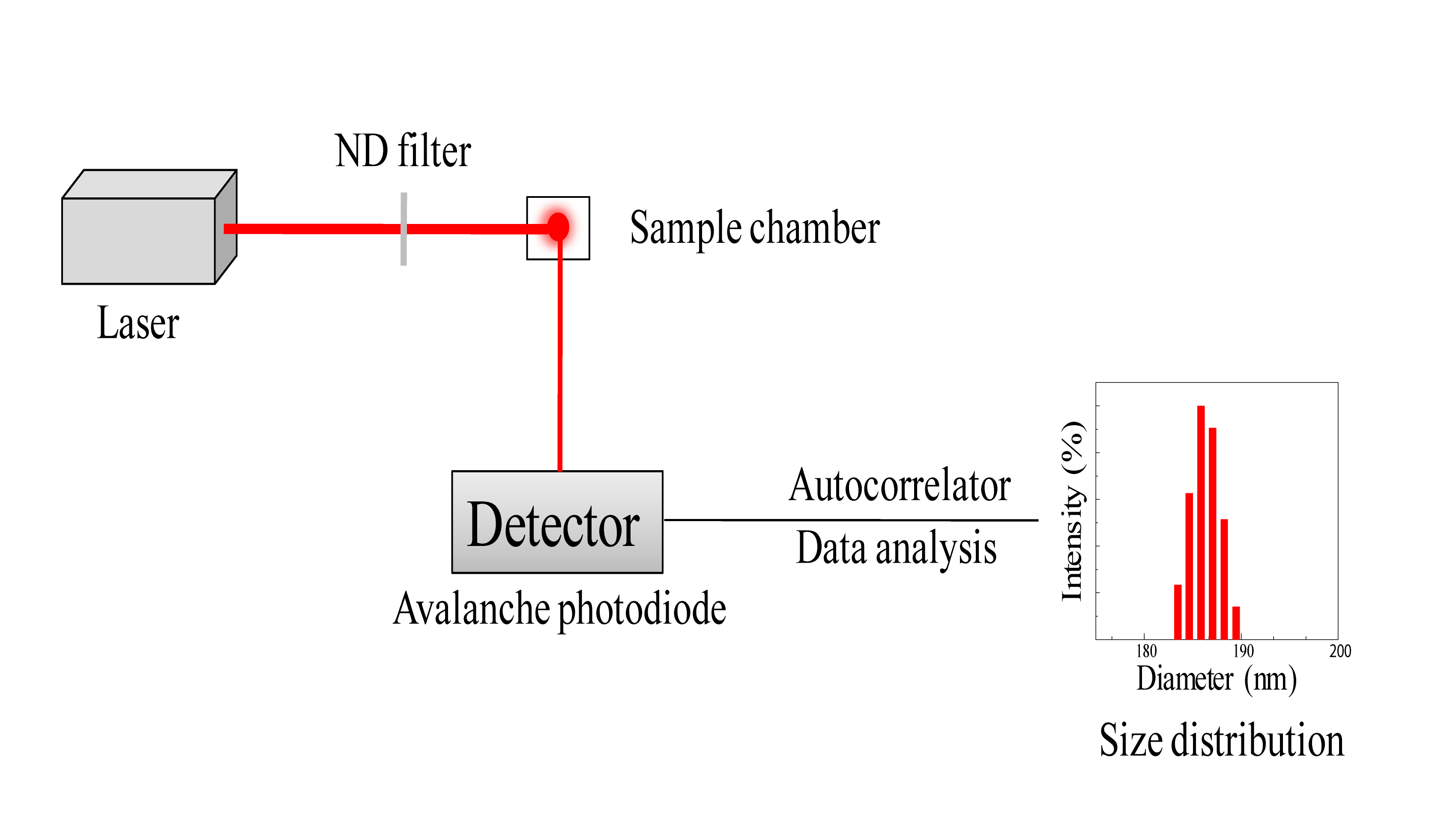 File:Schematic Of DLS.png