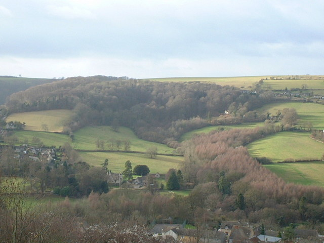 Selsley Common and Hill - geograph.org.uk - 433973
