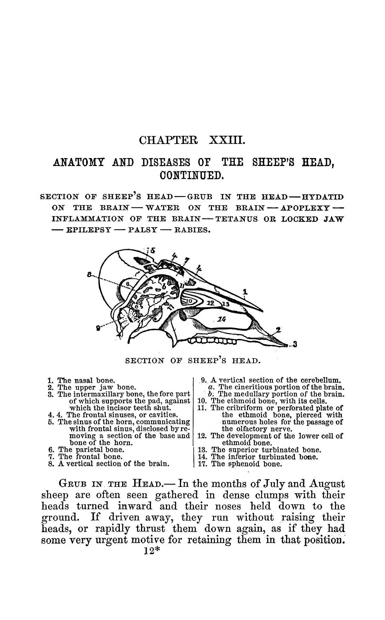 File:The practical shepherd BHL37776322.jpg - Wikimedia Commons