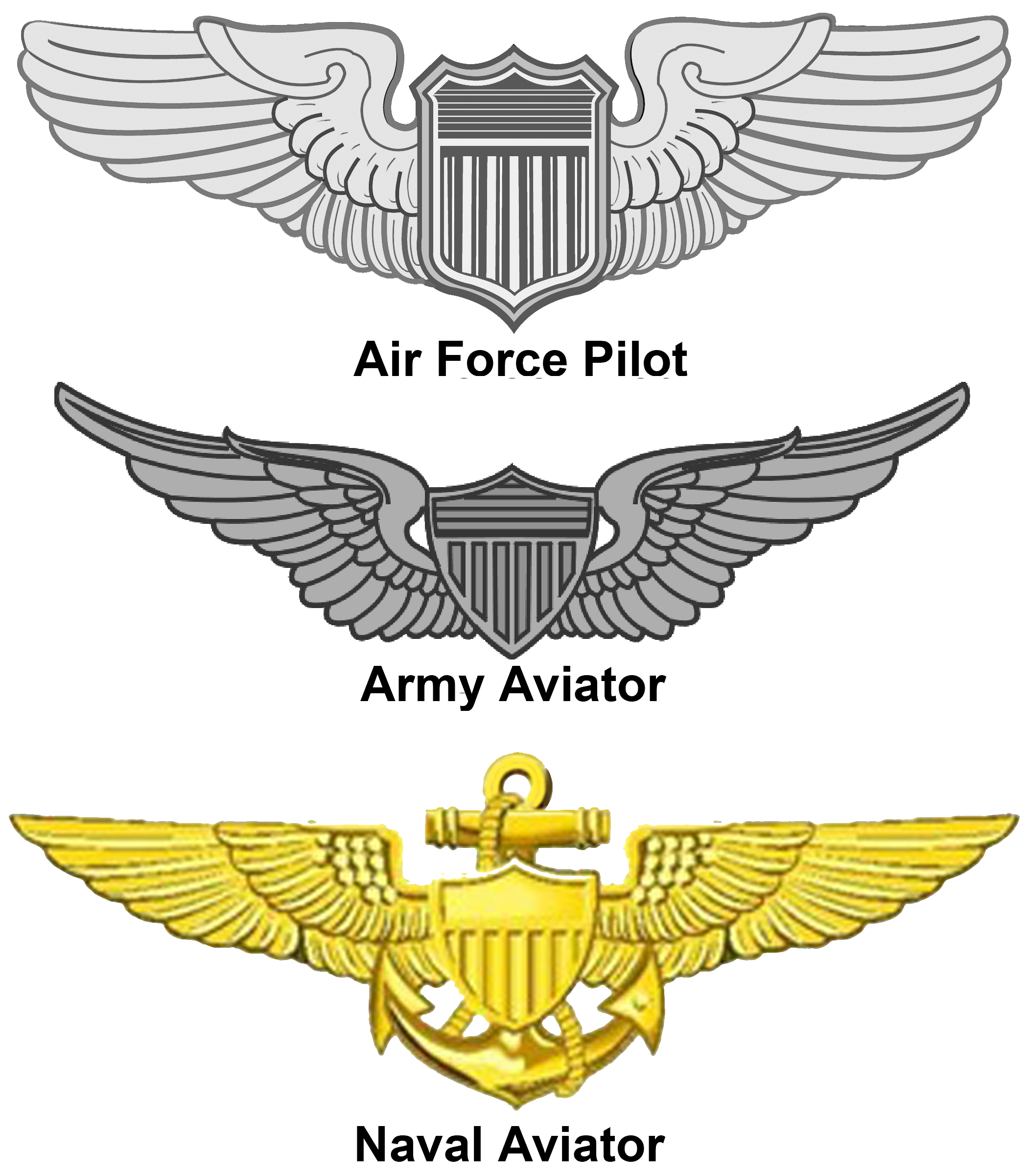 File:US - Aviation Wings.png - Wikimedia Commons