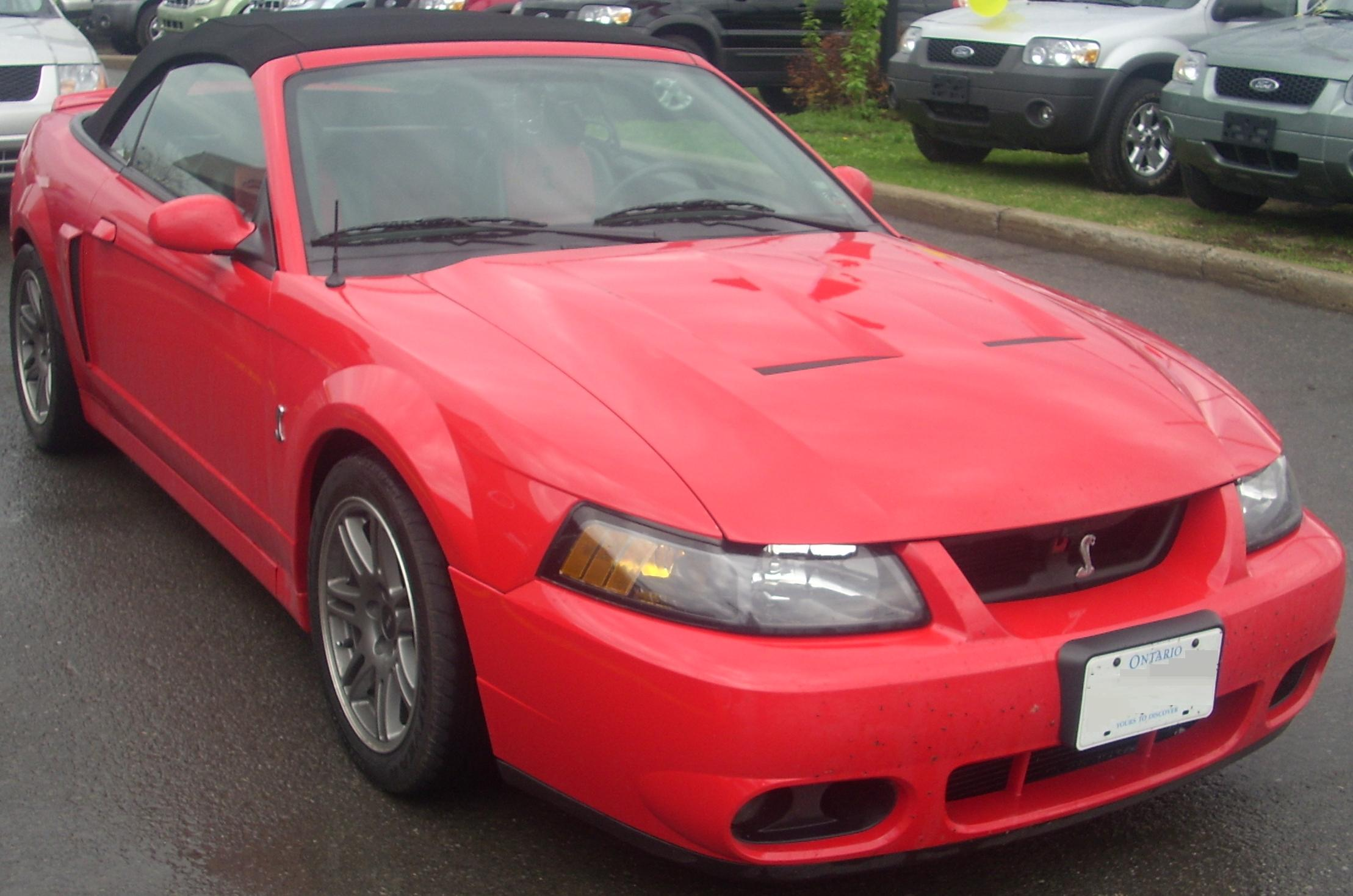 File 99 01 Ford Mustang Svt Cobra Convertible Sterling