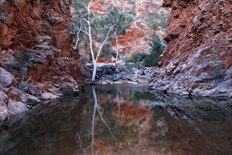 upload.wikimedia.org_wikipedia_commons_3_30_a160_west_macdonnell_national_park_australia_serpentine_gorge_2007.jpg