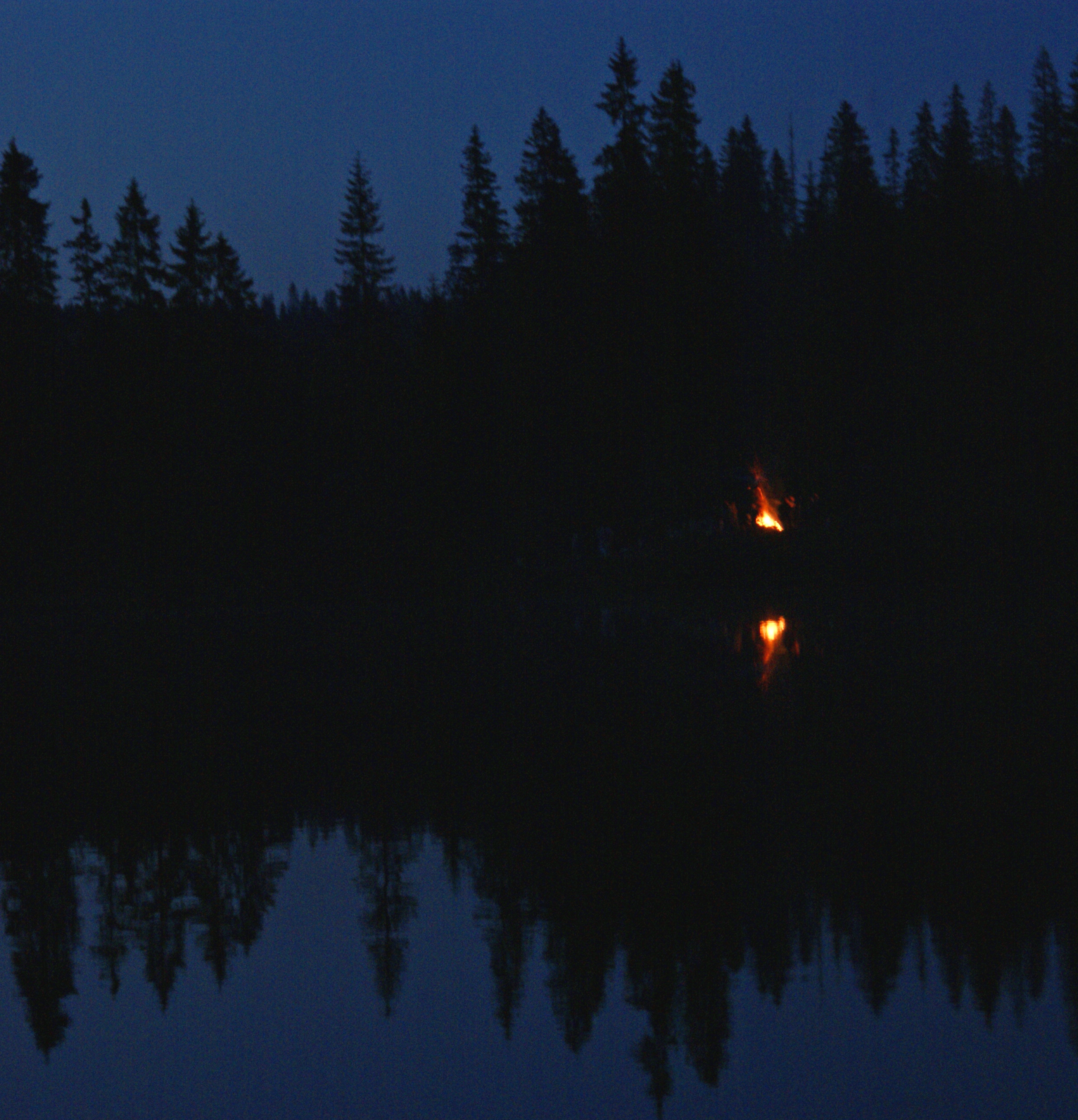 Looking from off shore at the forest at night
