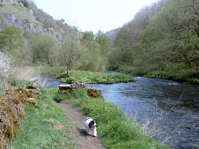 Chee Dale - geograph.org.uk - 74876