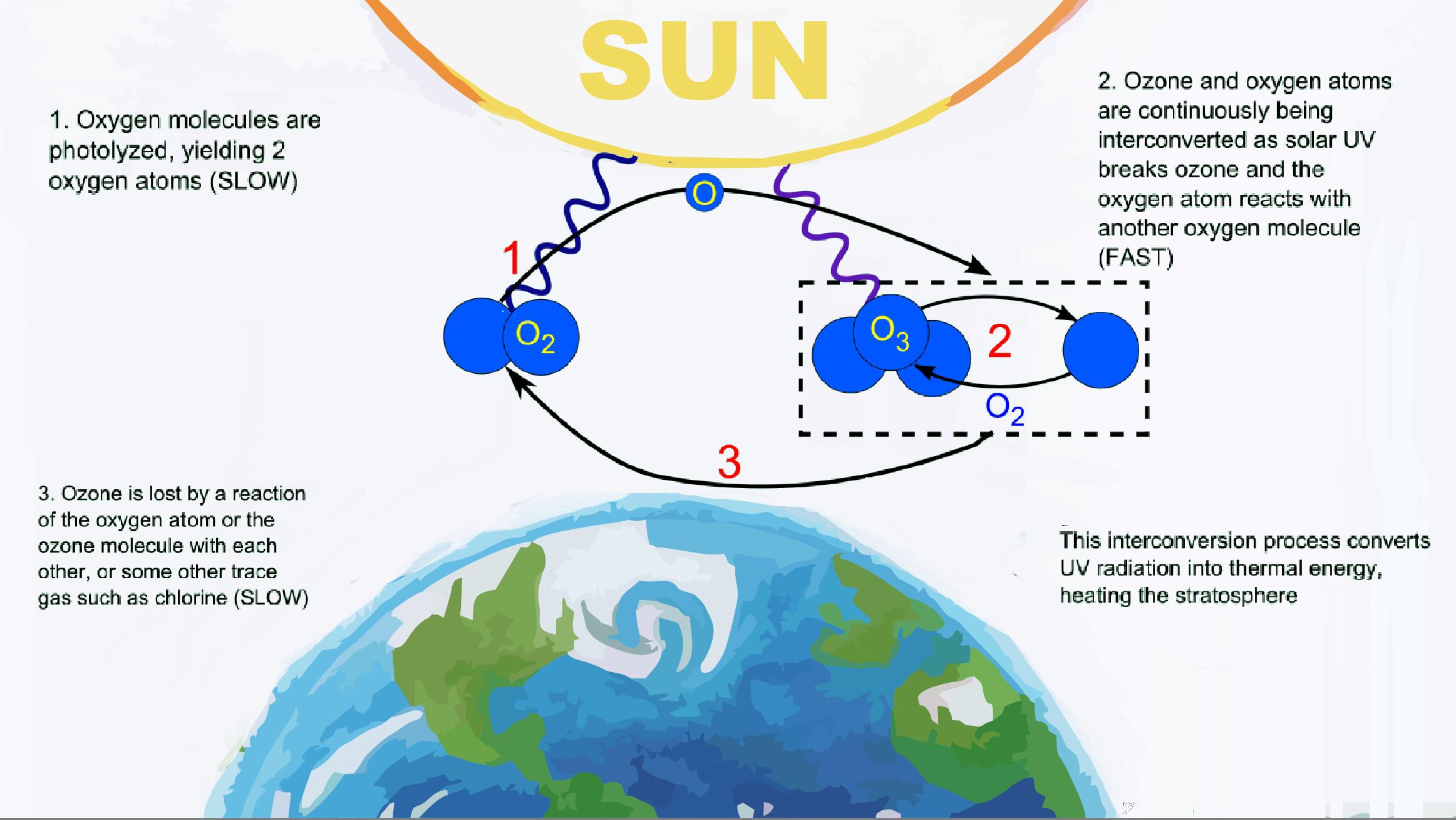 File:Ciclo del ozono..png - Wikimedia Commons