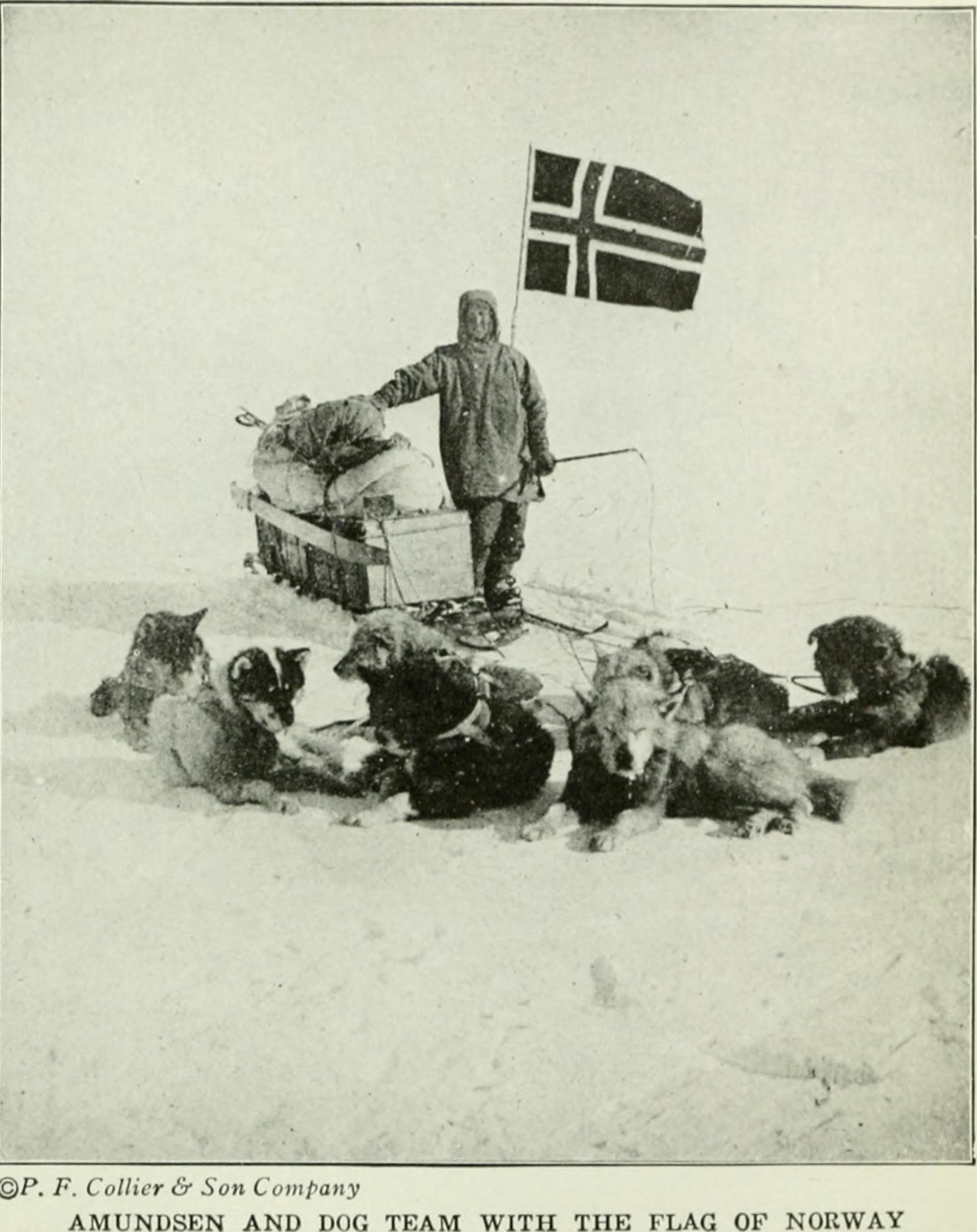 Roald Amundsen and Dog Team