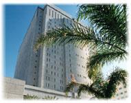 Federal Detention Center, Miami