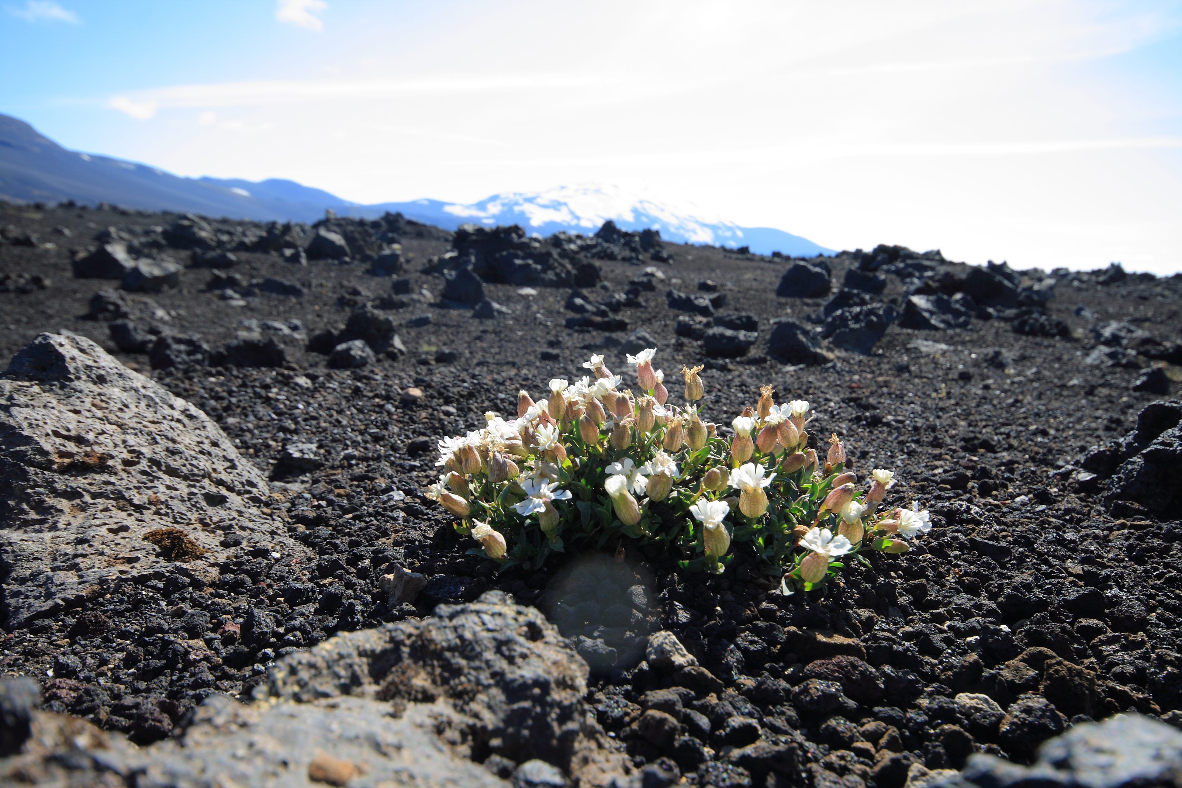 Benefits From Volcanoes