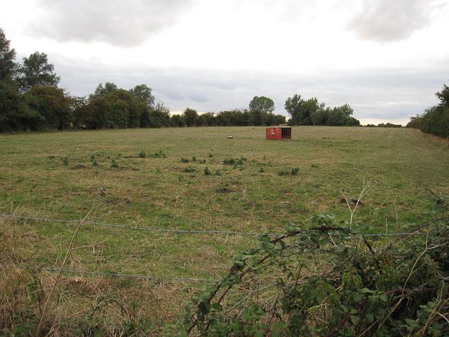 File:Grassy field - geograph.org.uk - 1480366.jpg