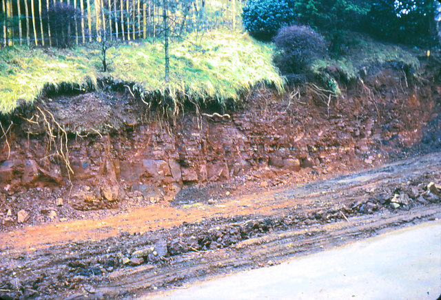 File:Gypsum bands in marl escarpment - geograph.org.uk - 641319.jpg