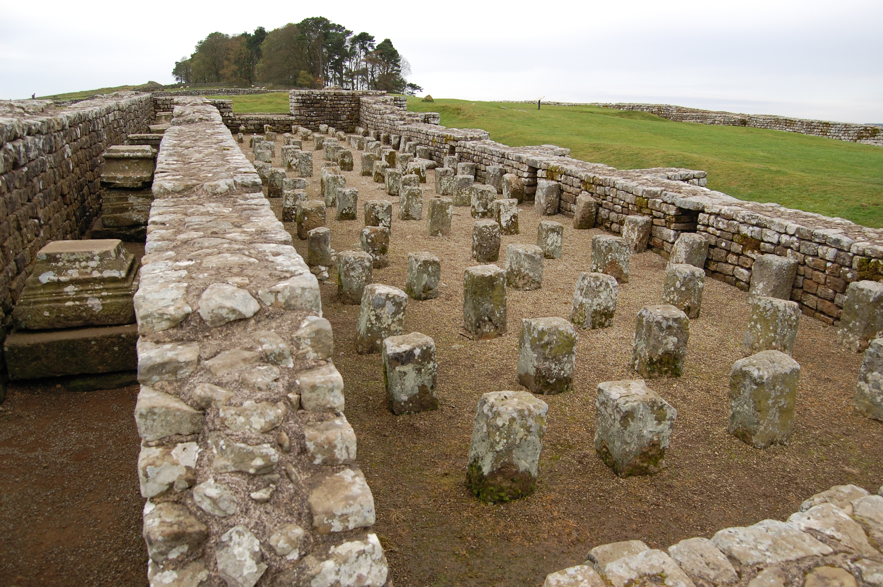 """Oblong building remains with upright stones sticking up where the """"floor"""" should be"""