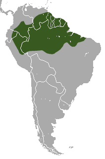 Linnaeus's two-toed sloth range