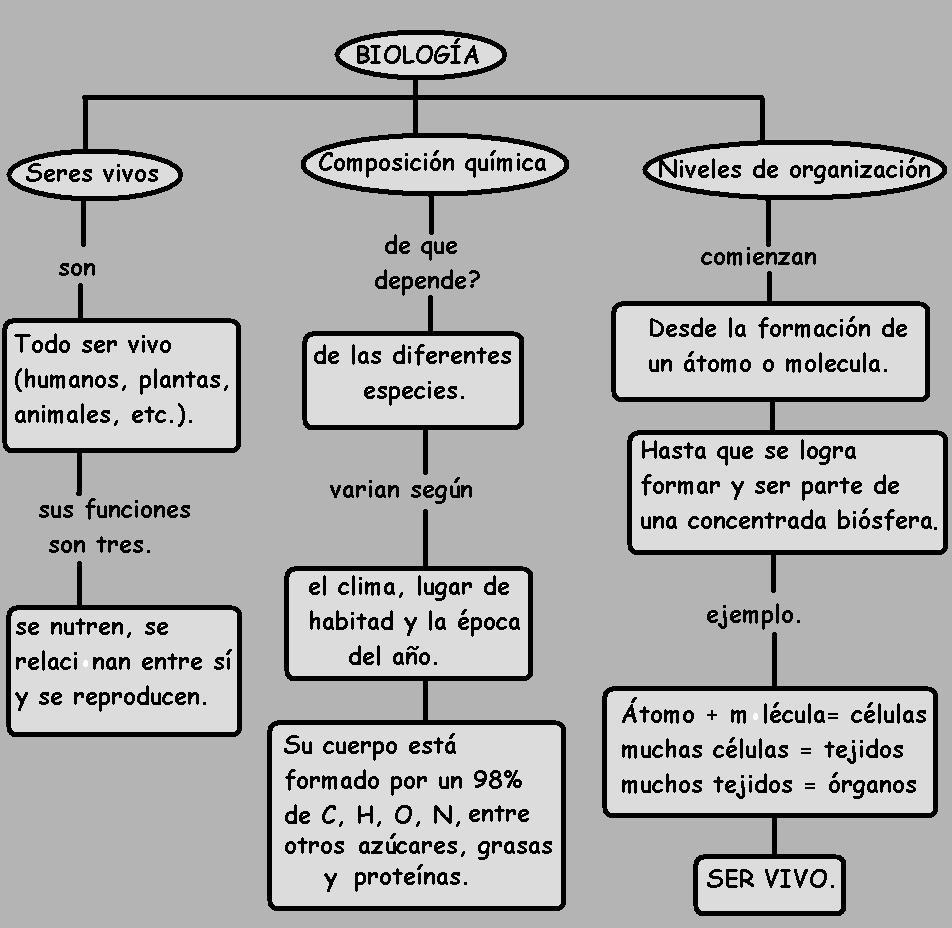 File Mapa Conceptual De Los Seres Vivos Sus Niveles De