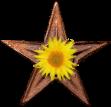 MediaWiki Barnstar.png