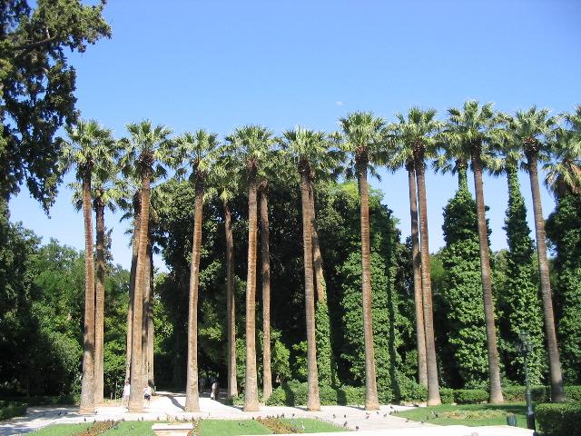 Jardín Nacional