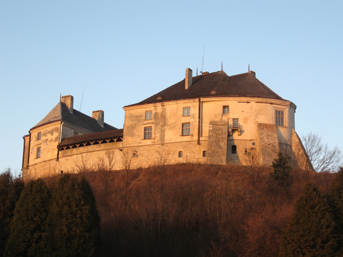 Файл:Olesko-Castle-24.jpg