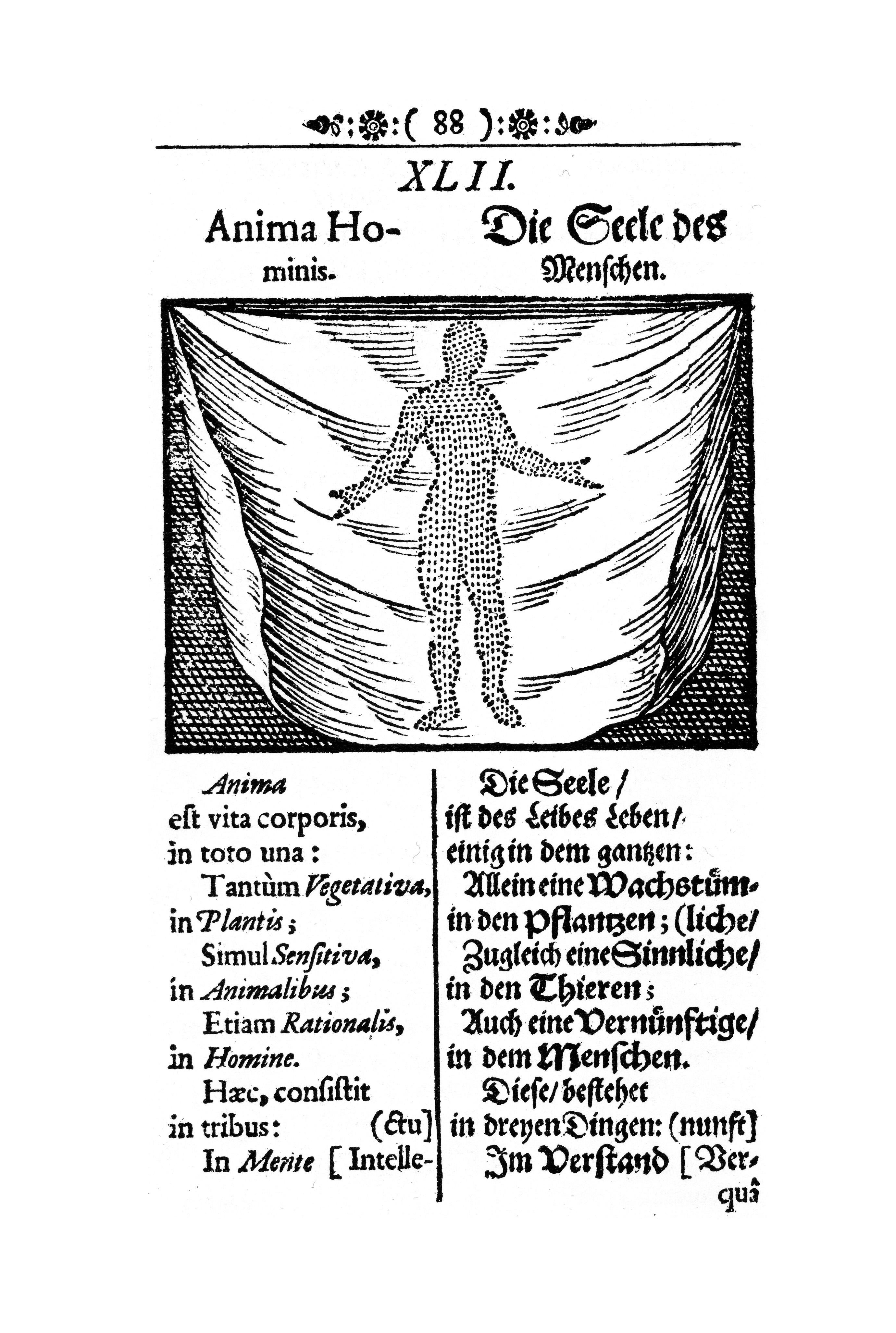 Comenius, Orbis sensualium pictus, anima hominis