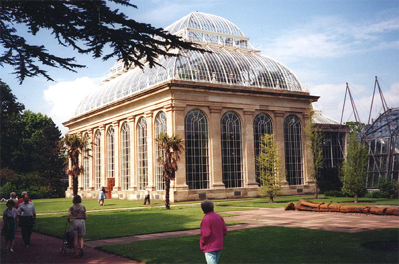 The Palm House at RBGE