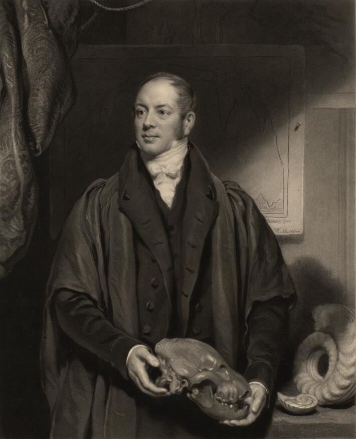image of William Buckland