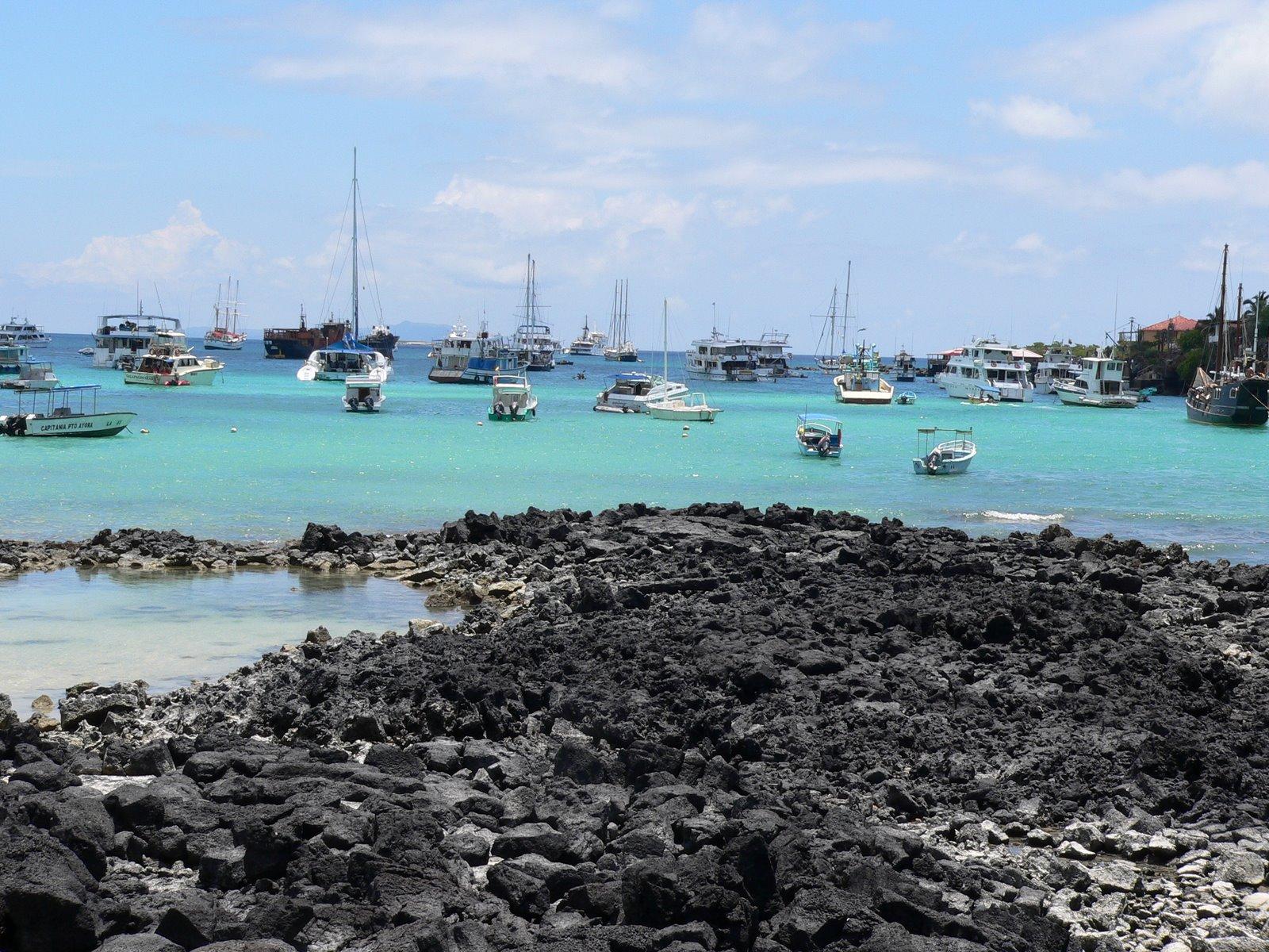 Lugares tur sticos del ecuador las islas gal pagos for Donde queda santa cruz