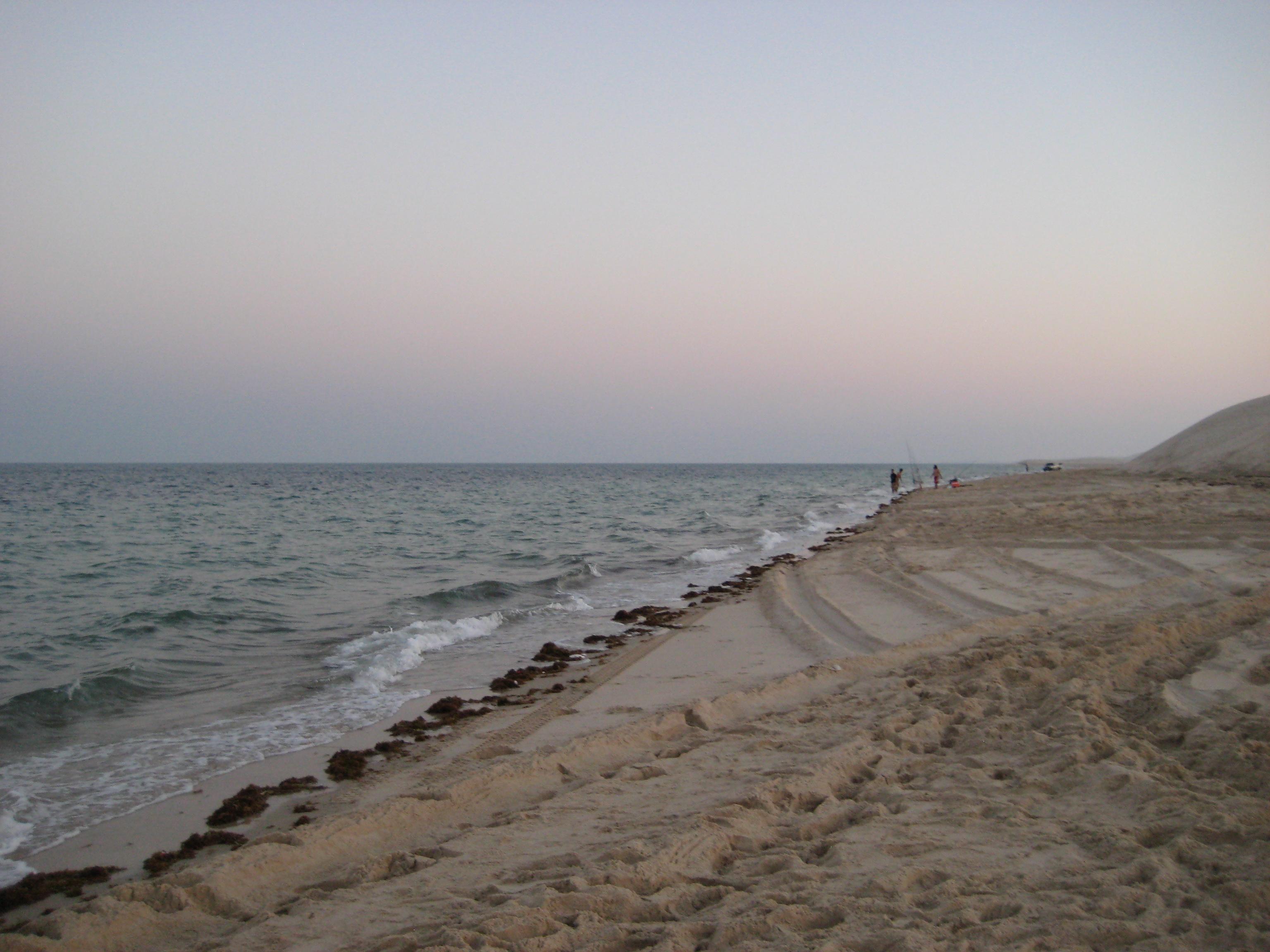 Mesaieed Qatar  city photo : Sealine beach near Mesaieed, Qatar 2014 Wikimedia Commons