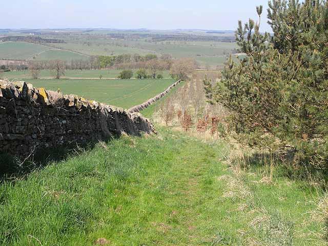 St Oswald's Way, near New Bingfield - geograph.org.uk - 1266009