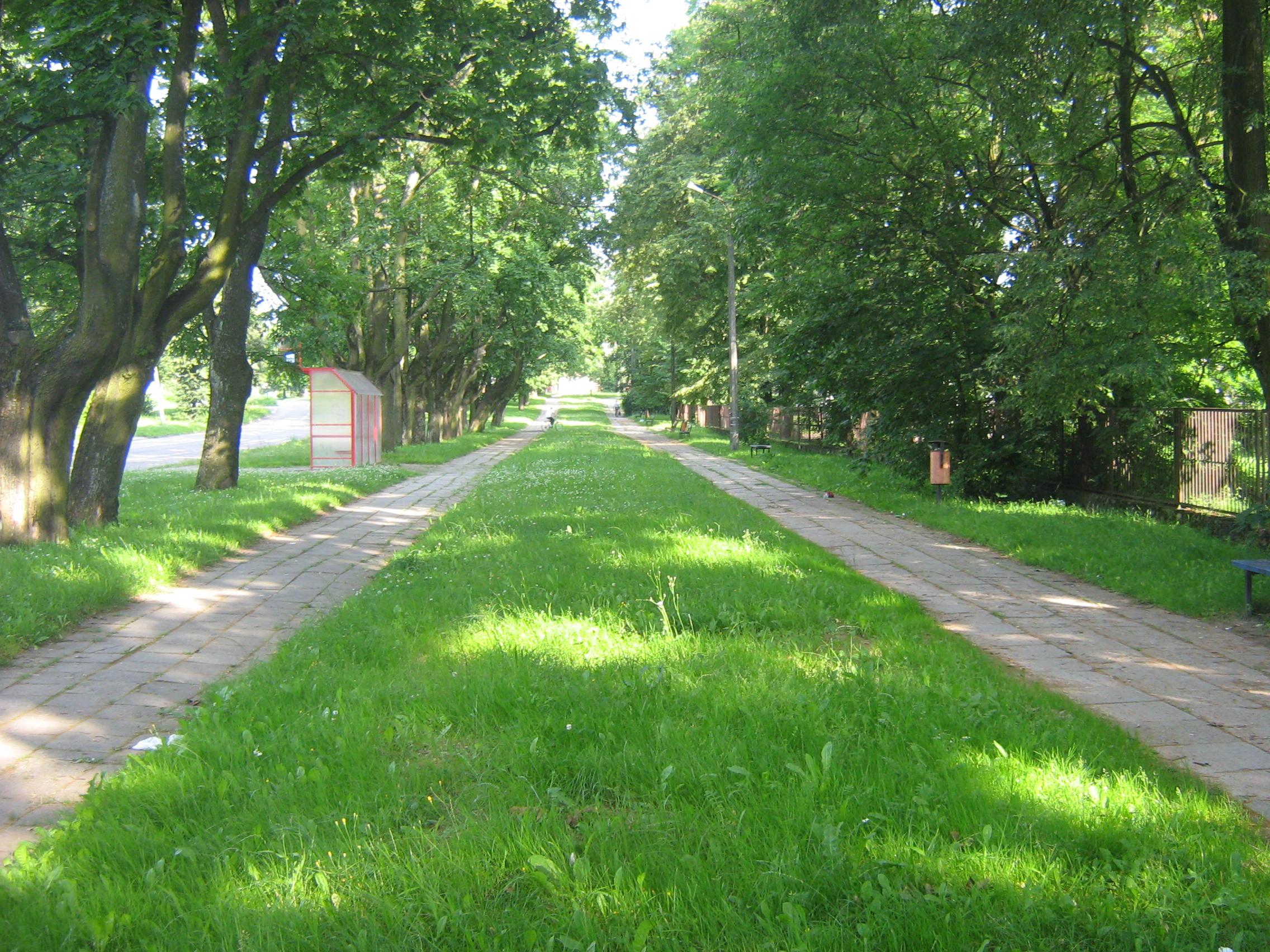 Szlak Tatarski Sokółka.jpg